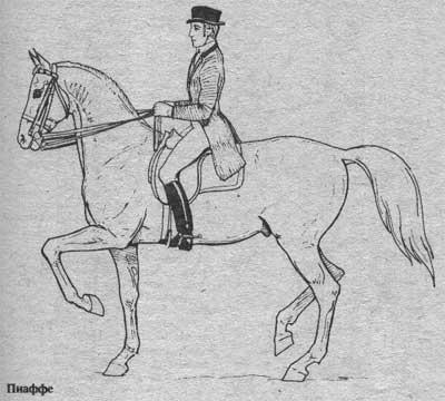 http://thehorses.ru/text/img_text/new/horse_57.jpg
