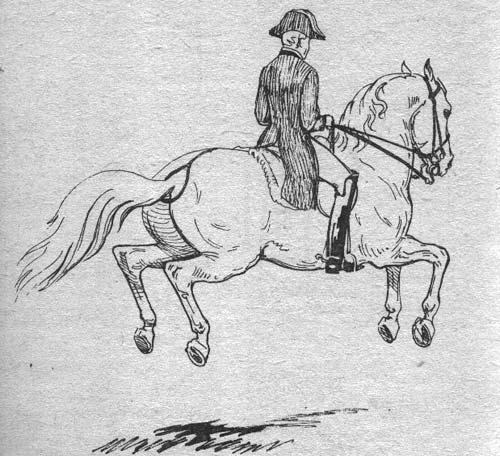 http://thehorses.ru/text/img_text/new/horse_7.jpg